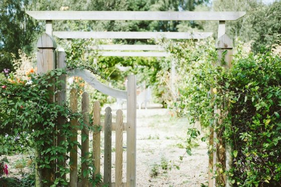 gate to garden with greenery